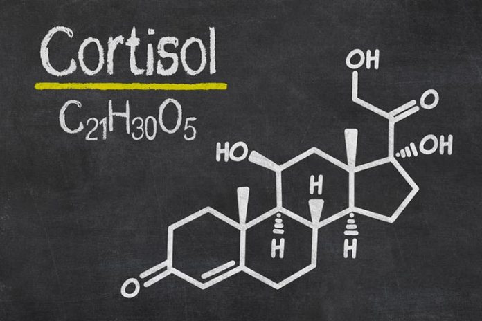Cortisol is the stress hormone produced by the adrenals when the body is under stress