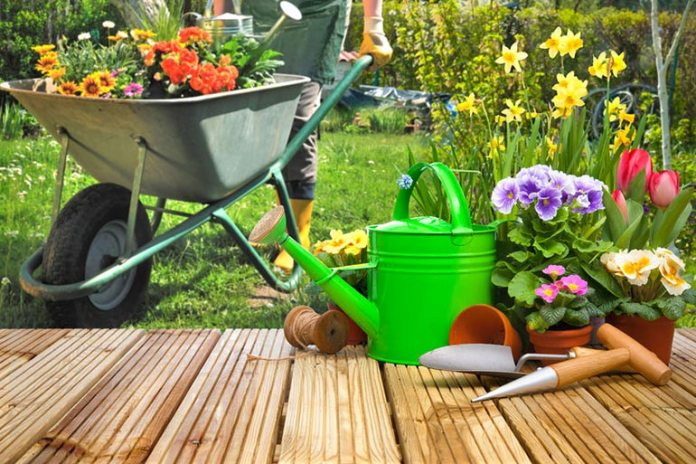 Maintain Healthy Skin Bacteria By Engaging In Outdoor Activities Like Gardening