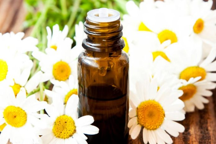 Chamomile oil reduces inflammation and helps treat dark circles