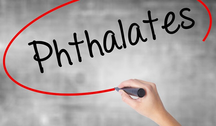 Watch Out For Phthalates In Furnishing Finishes And Products With Polyvinyl Chloride As They Affect Reproductive Functioning