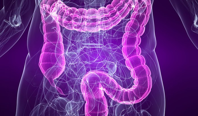 IBS is a chronic disorder that can cause diarrhea or constipation