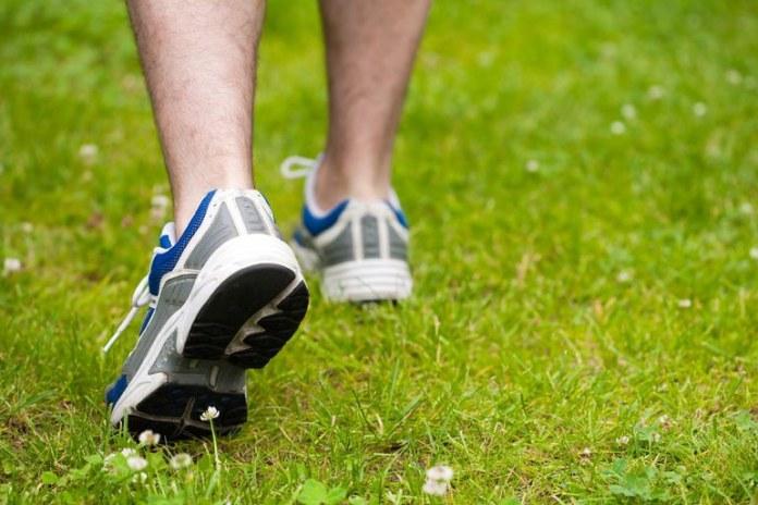 Running or walking backward has more muscle activation