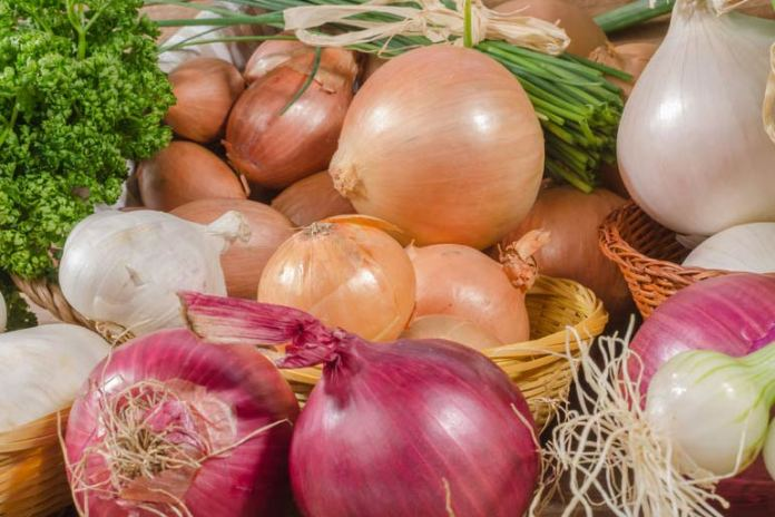 Garlic and onions are a great antioxidant