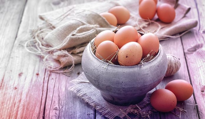 ree-Range Eggs Have More Protein and Omega-3