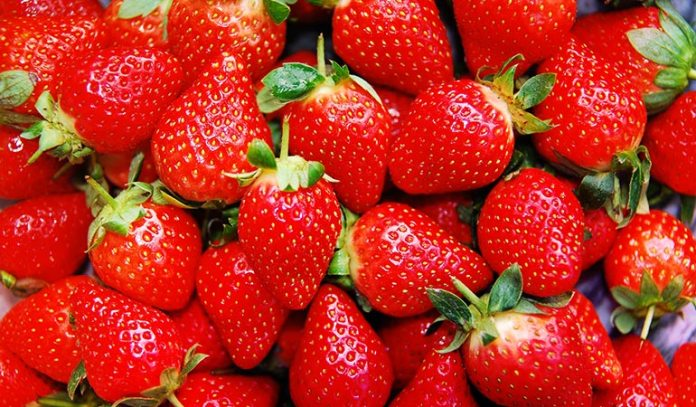 Strawberries Grow Close To The Ground And Are Doused With Pesticides