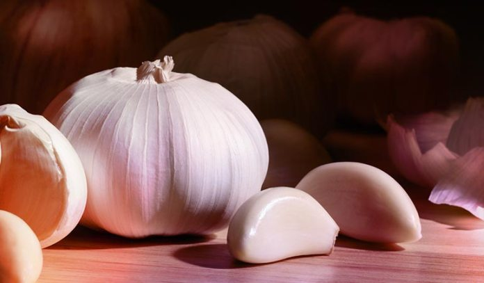 Garlic is a herbal cure-all