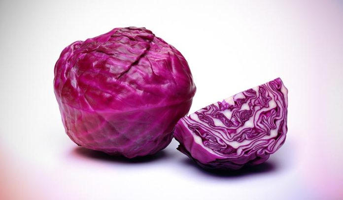 Red cabbage protects your heart from disease