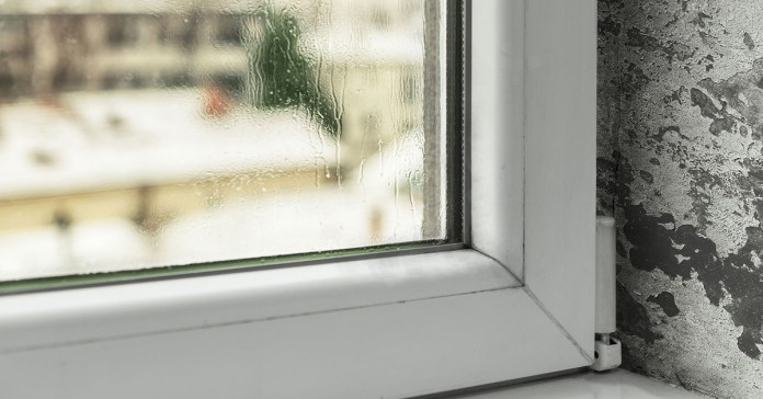 Mold is caused by condensation and excess moisture