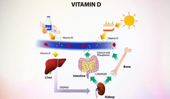 Vitamin D must be checked according to your doctor's advice.)