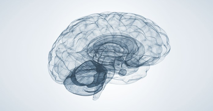If your brain remains inactive it will lead to cognitive decline