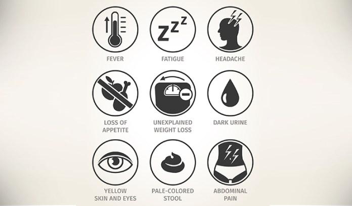 Symptoms of hep c include nausea and fatigue
