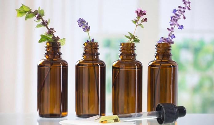 Essential Oils Are Used In Homemade Insect Repellents