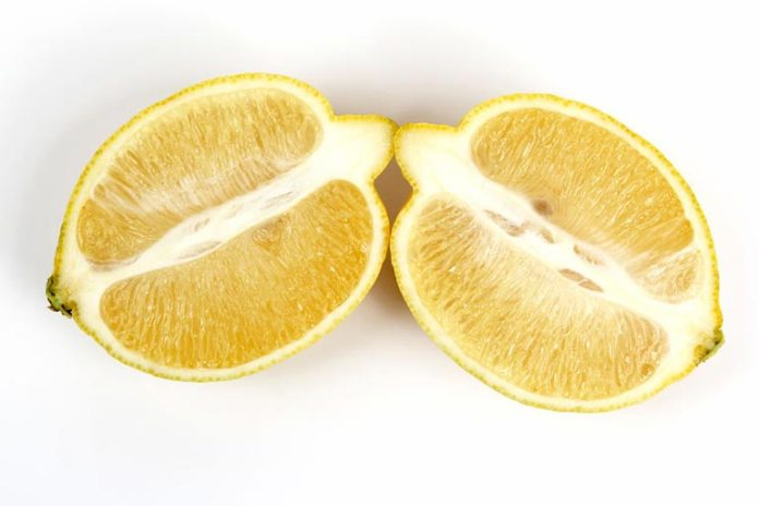 Lemon pith can be used in stocks