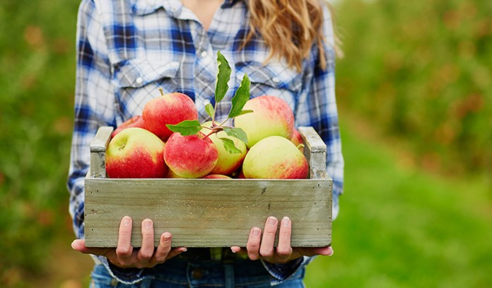 Nature helps you to focus on organic whole foods and plenty of vegetables