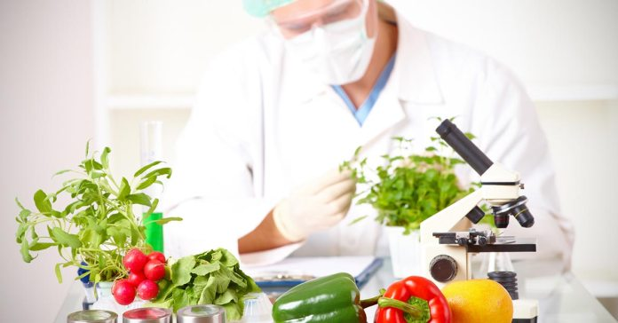 We Are Now Able To Genetically Alter The DNA Of The Food We Consume