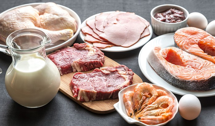 Myth 2: You Can Consume As Much Protein As You Want