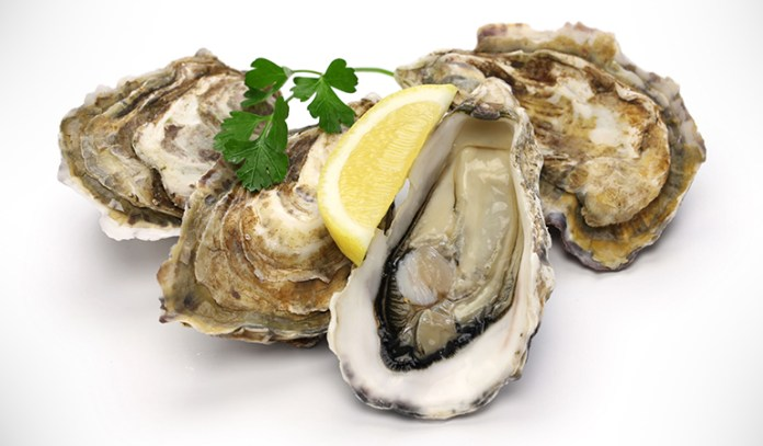 Shellfish toxins accumulate in clams, mussels, scallops, and oysters.