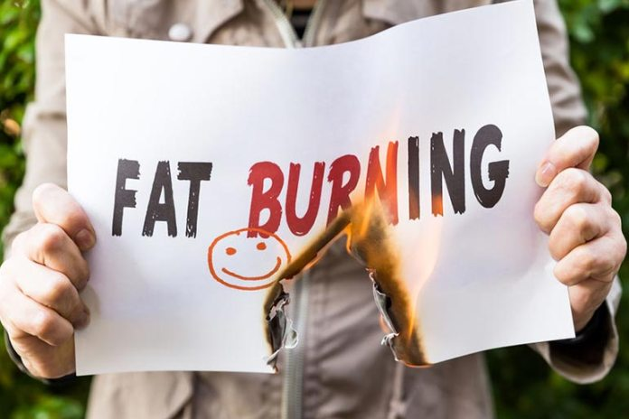 Fat loss slows down metabolism.