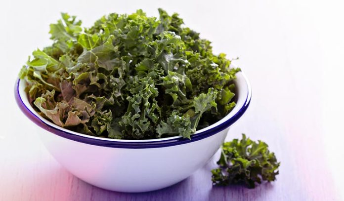 Kale contains over 45 different flavonoids and is prebiotic in nature