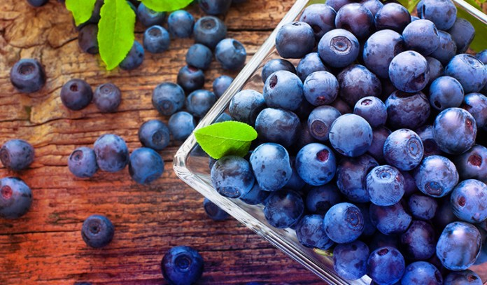 Blueberries are a great source of antioxidants