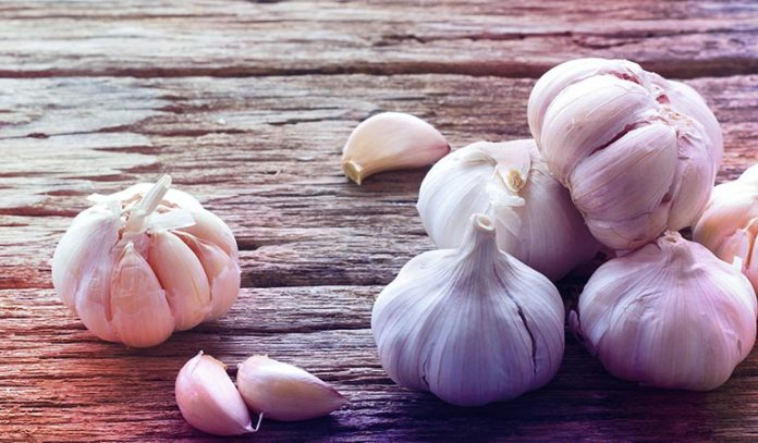 Garlic has anti-diabetic and hypolipidemic properties, which help you maintain healthy blood sugar levels)