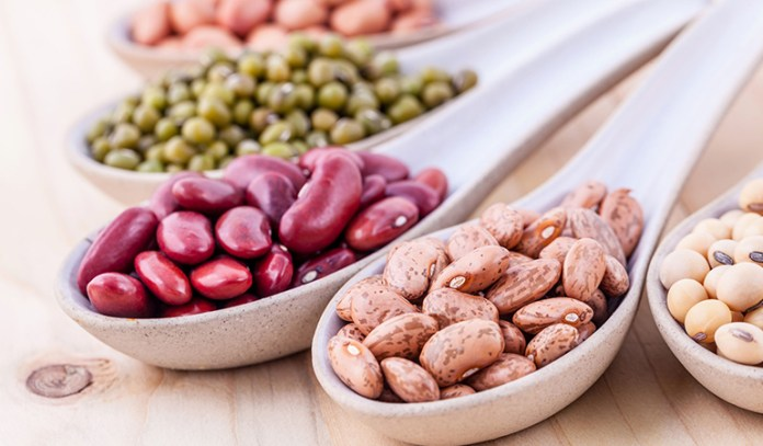 Beans are a healthy source of protein