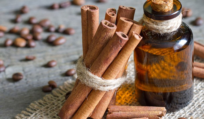 antimicrobial action of cinnamon oil