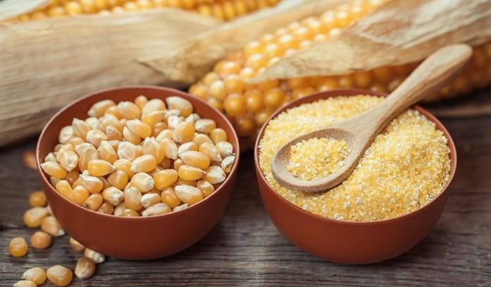 Corn contains useful antioxidants