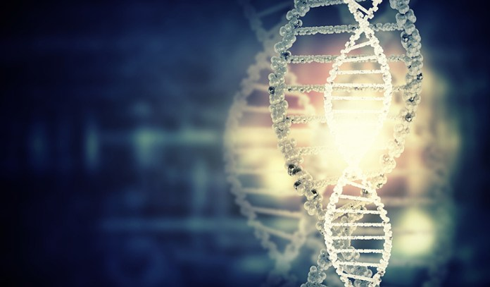 Your Genes Play A Role In Bruising