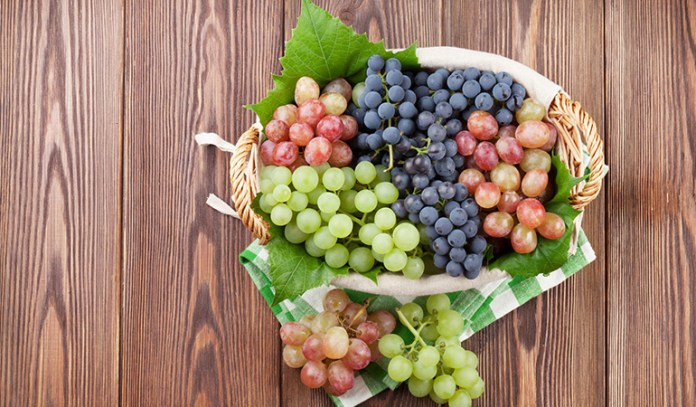 Grapes contain a lot of vitamins and nutrients