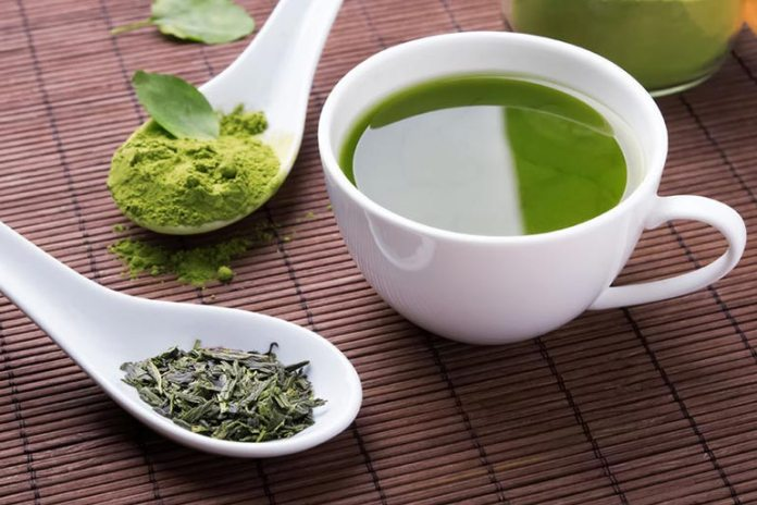 Green tea increases the rate of energy metabolism