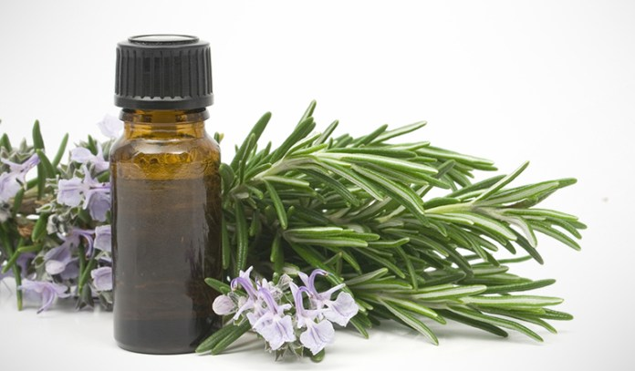 Rosemary contains antioxidant properties that prevent cancer