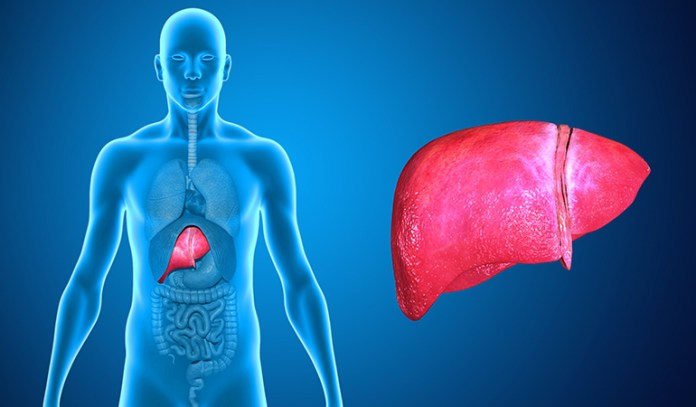 liver damage and stomach ulcers may result from niacin flush