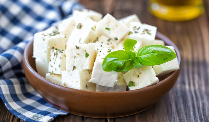 Vegan Cheese Can Cause Unexpected Weight Gain