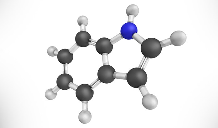 Indole is an organic compound that is made by the bacteria in our gut.
