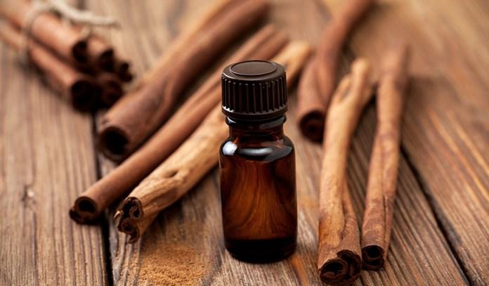 Cinnamon bark oil has potent antimicrobial properties