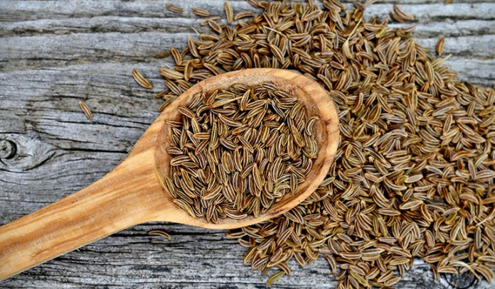 Caraway seeds are aromatic flavoring spices