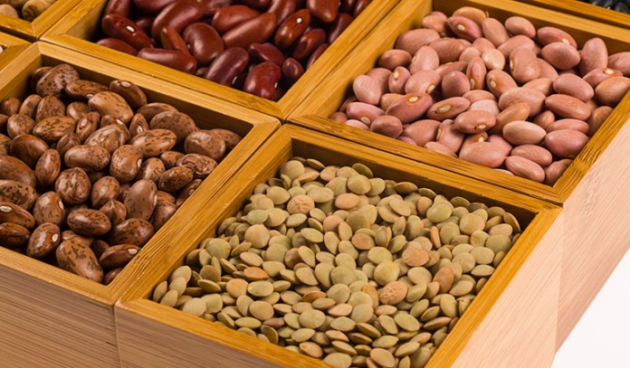 The protein in legumes helps burn fat.