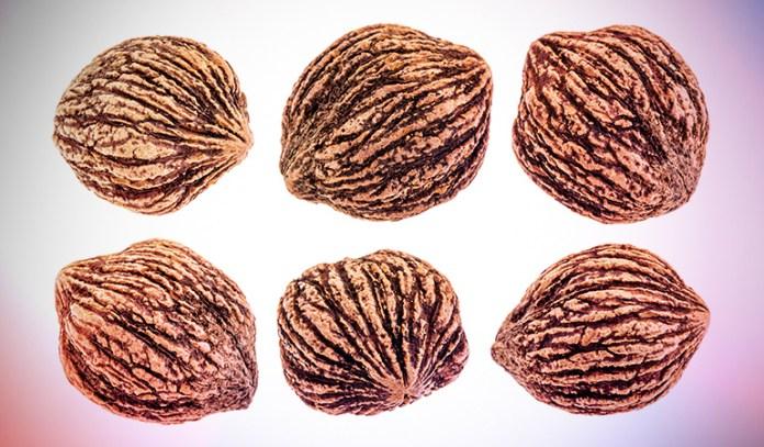 1 oz of butternuts has 1.14 mg iron.