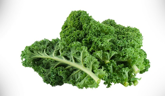 1 cup kale, cooked: 94 mg <!-- WP QUADS Content Ad Plugin v. 2.0.26 -- data-recalc-dims=