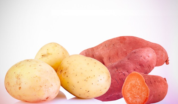 A large russet potato baked with skin has 7.86 gm of protein.