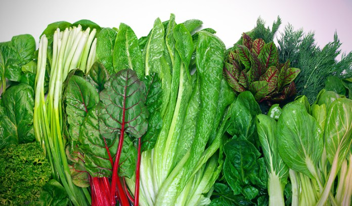 A cup of spinach has 5.35 gm of protein.