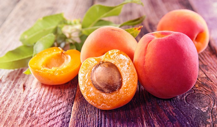 A cup of fresh apricots: 1.47 mg of vitamin E (9.8% DV)