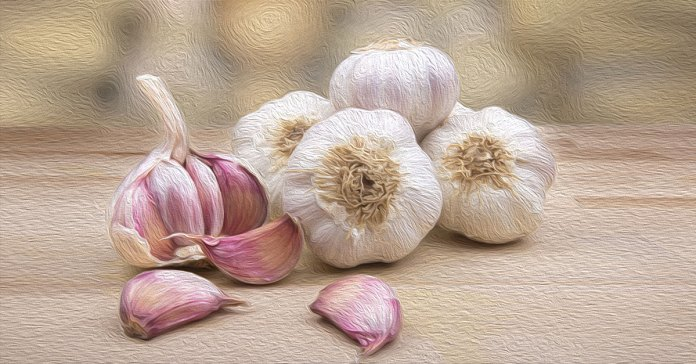 Garlic can lower total cholesterol, LDL cholesterol, and triglyceride levels.