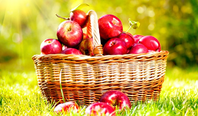 A cup of sliced red apple has 0.35 mg of boron.
