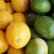 lemon lime by Zoebess