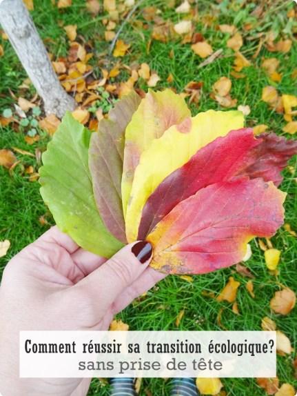 transition écologique