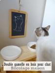 DIY Réaliser une double gamelle en bois pour chat