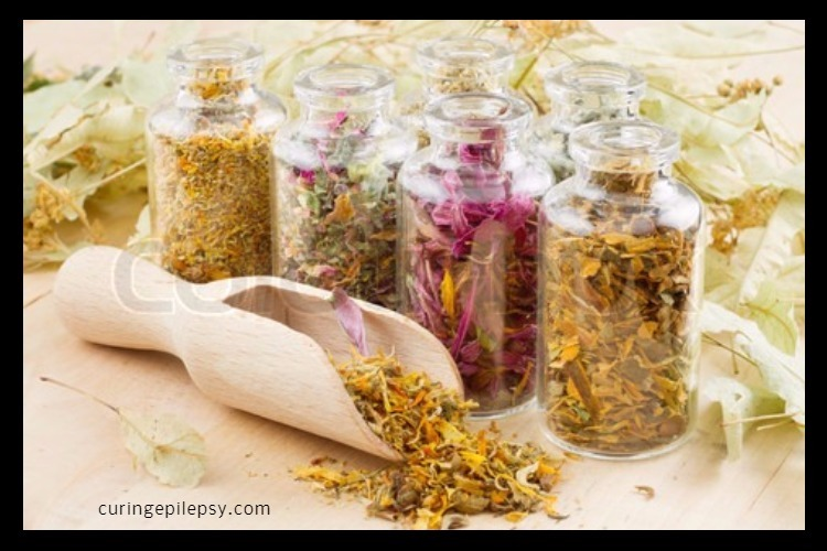 Treatment for Epilepsy: Herbal Remedies for Epilepsy