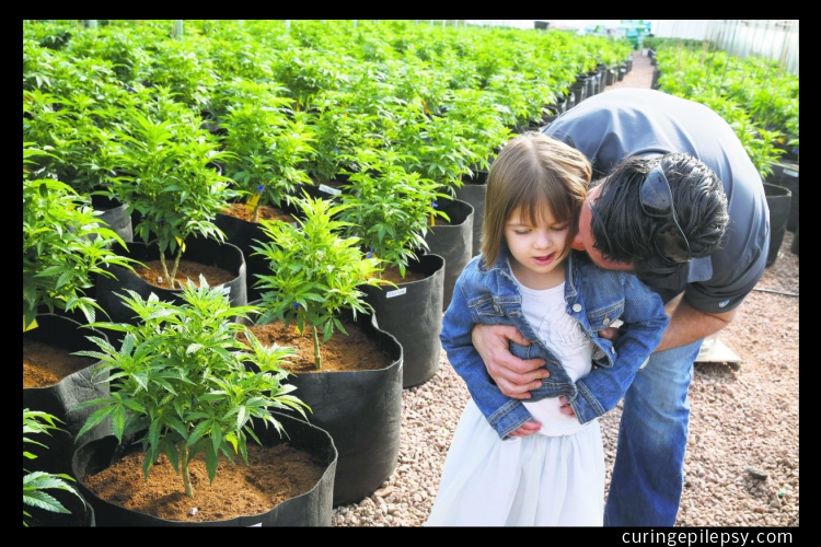Children Using Cannabis Received 50 Percent or More Reduction In Seizures.